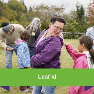 Leaf ID-Thinking Like a Scientist